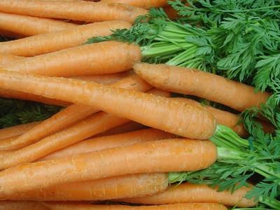 Karotten